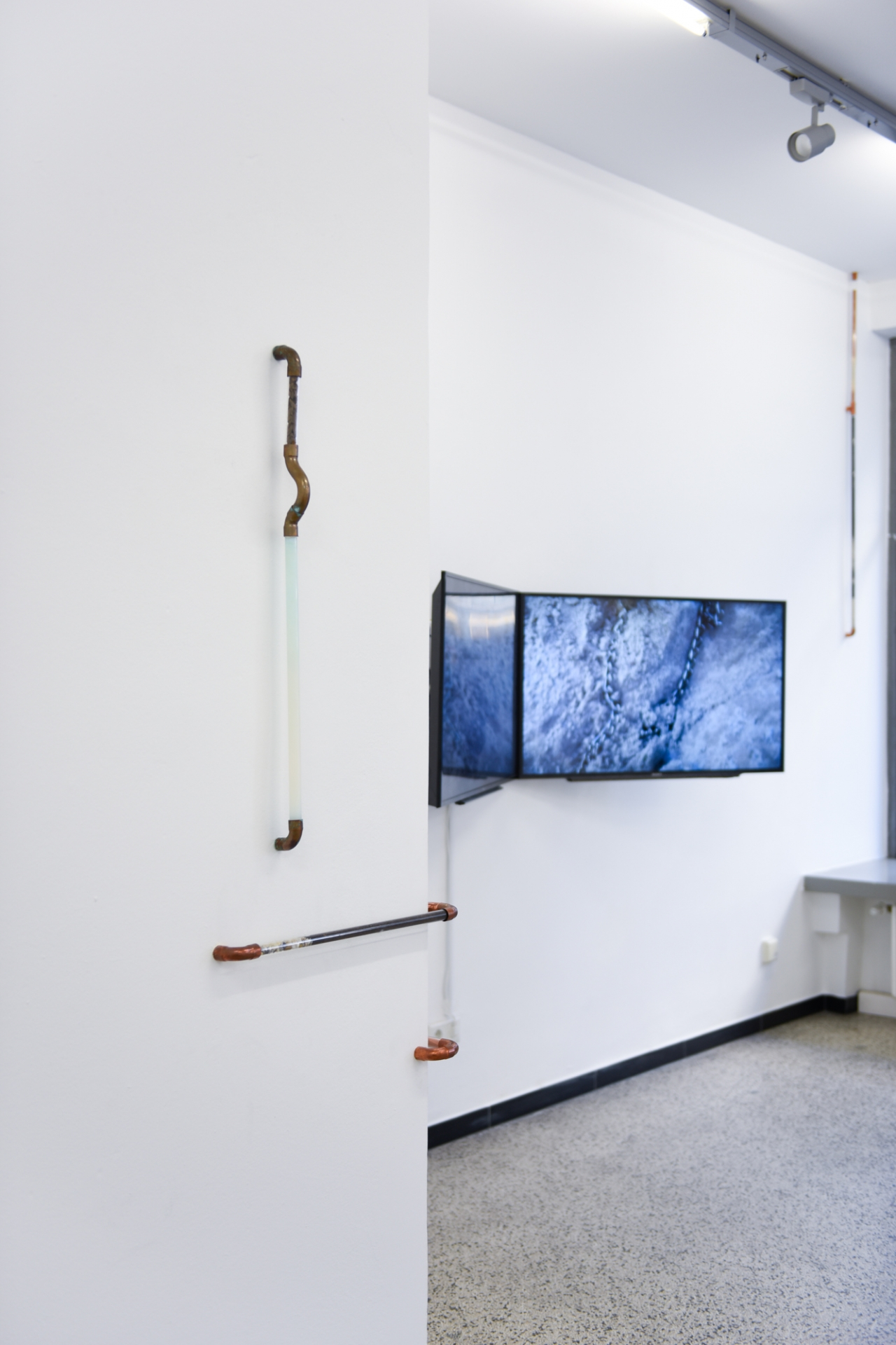 ANNKATHRIN KLUSS Neo-Chimeras (on Images and other Artificialities)